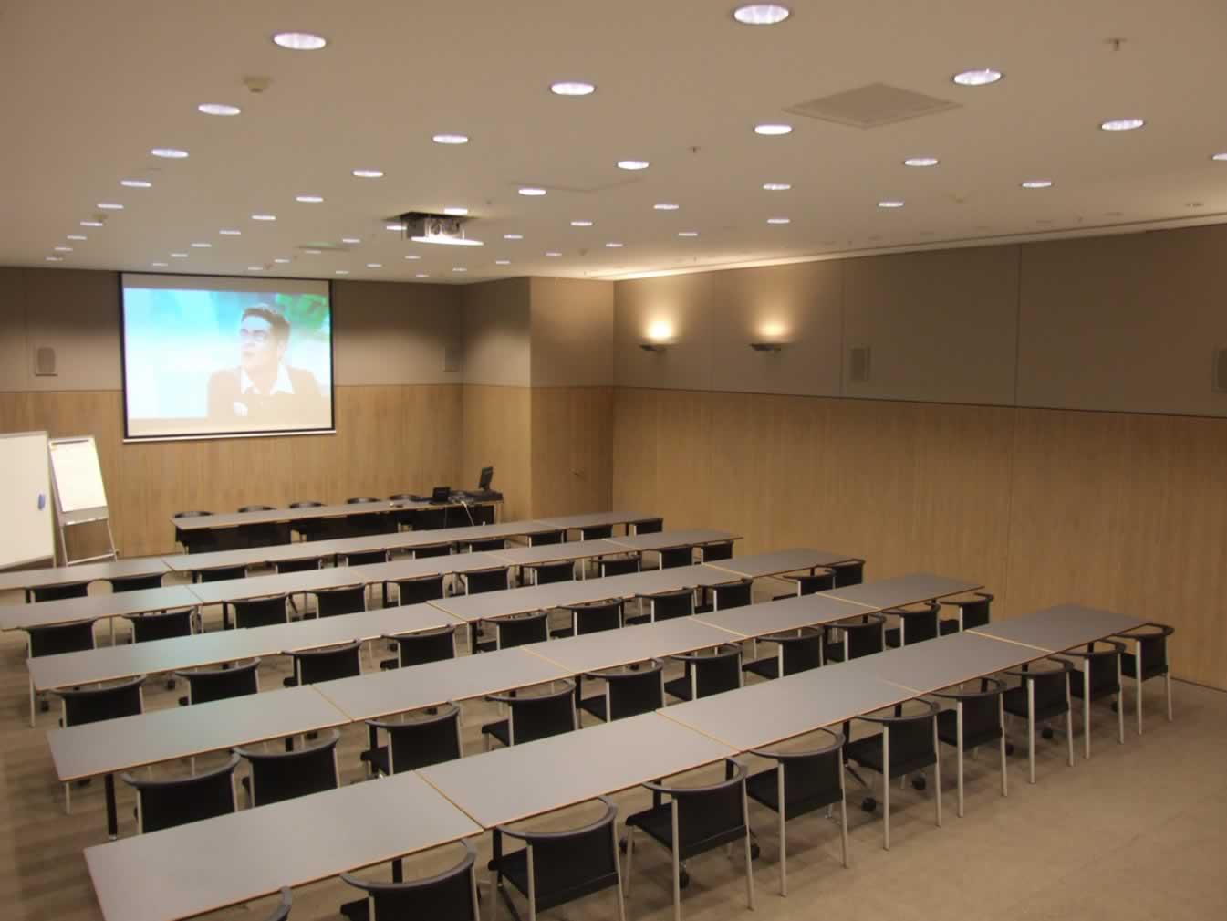 Polyvalente ruimte met dubbele projectie, audio-installatie en geautomatiseerde bediening